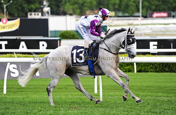 ARINOSA   Premier Stakes